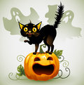 Scared black cat on a pumpkin and ghost. Royalty Free Stock Photo