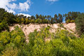 Scarp of sand trees on the in the forest Royalty Free Stock Photo