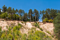 Scarp of sand trees on the in the forest Stock Photo
