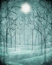 Scary forest illustration blue with moon Stock Photography