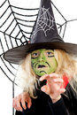 Scary green witch for Halloween with spiderweb Stock Photography