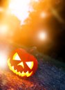 Scary halloween background with pumpkin Stock Images