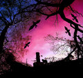Scary halloween background with silhouettes of trees and bats flying around chimney at sunset Stock Images