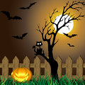 Scary halloween illustration a with a tree with a cat spooky bats flying a bright full moon and a creepy pumpkin Stock Photography