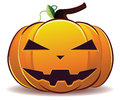 Scary halloween pumpkin jack o lantern on white background Stock Image