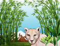 A scary tiger at the bamboo forest illustration of Royalty Free Stock Photography