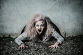 A scary undead zombie girl bloody Stock Photography