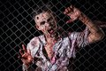 Scary zombie cosplay creepy behind the fence Stock Photos