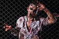 Scary zombie cosplay creepy behind the fence Royalty Free Stock Photography