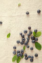 Scattered Blue Berries on Table