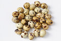 Scattering of multi colored quail eggs are located on a white background small depth sharpness focus in the center Royalty Free Stock Image