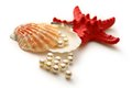 Scattering white pearls in seashell and seastar Stock Images