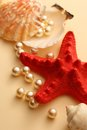 Scattering white pearls seashell seastar Stock Photo