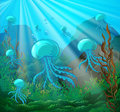 Scene with jellyfish swimming underwater Royalty Free Stock Photo
