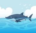 Scene with shark in ocean
