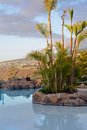 Scene with swimming pool and tropical vegetation canary islands spain afternoon shoot Stock Photos