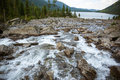 Scenery mountain stream in forest Royalty Free Stock Photo