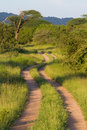 Scenic africa road Royalty Free Stock Photo