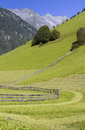 Scenic alpine meadow in South Tyrol, Italy Stock Photography
