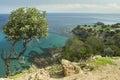 Scenic coastal countryside at Akamas peninsula of Cyprus Royalty Free Stock Photo