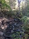 Scenic Fall Walk At Peterson C...