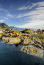 Scenic fjord on Lofoten islands with typical red fishing hut Royalty Free Stock Photo