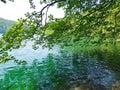Scenic greenery inside plitvice national park beautiful nature at Stock Photo