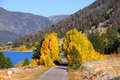 Scenic lake shore deive hebgen in autumn near yellowstone Stock Photography
