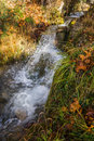 Scenic mountain autumn landscape with river and   waterfalls, P Royalty Free Stock Photo