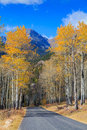 Scenic mountain road in fall a through landscape of a colorado rocky mountains Stock Photography