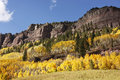 Scenic near Telluride, Uncompahgre National Forest, Colorado Royalty Free Stock Photo