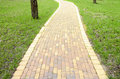 Scenic pathway winding going through green meadow Royalty Free Stock Photography