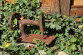 Scenic the photo of the rusty hull of an old manual sewing machine amid the greenery of the old garden and the old wooden walls Royalty Free Stock Photo