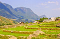 Scenic of rice terraced fields Royalty Free Stock Photos