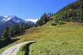 The scenic road among green alpine meadow Stock Photo