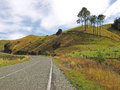 Scenic road on new zealand s south island Royalty Free Stock Images