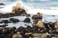Scenic rocky coastline along historic mile drive pebble beach california Stock Images