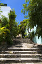 Scenic street with steps and tropical plants in old san juan puerto rico Stock Photos
