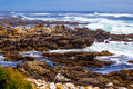 Scenic surf wave on rocky coastline breaker break Stock Images