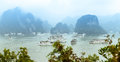 Scenic top view of halong bay in vietnam panorama with green leaves foreground cliffs and rocks standing out water with boats Stock Photography