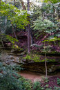 Scenic trails in turkey run state park its great hiking through marshall indiana usa cliffs and river sports makes this a Stock Images