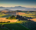 Scenic Tuscany landscape in golden morning light Royalty Free Stock Photo
