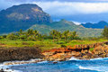 Scenic view, Mahaulepu heritage trail, Kauai Royalty Free Stock Images