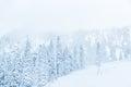 scenic view of small people walking in snow mountain,Washington,USA. Royalty Free Stock Photo