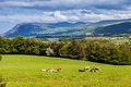 Scenic view of Welsh mountains and countryside Royalty Free Stock Photo