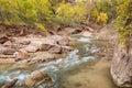 Scenic Virgin River in Autumn Royalty Free Stock Photo