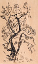 Scetch by black watercolor apple tree in late fall Royalty Free Stock Images