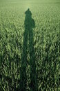 Schatten auf Feld Royalty Free Stock Photos