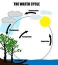 Schematyczny przedstawicielstwo wodny cykl w naturze Obrazy Stock