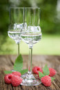 Schnapps, raspberries Royalty Free Stock Image